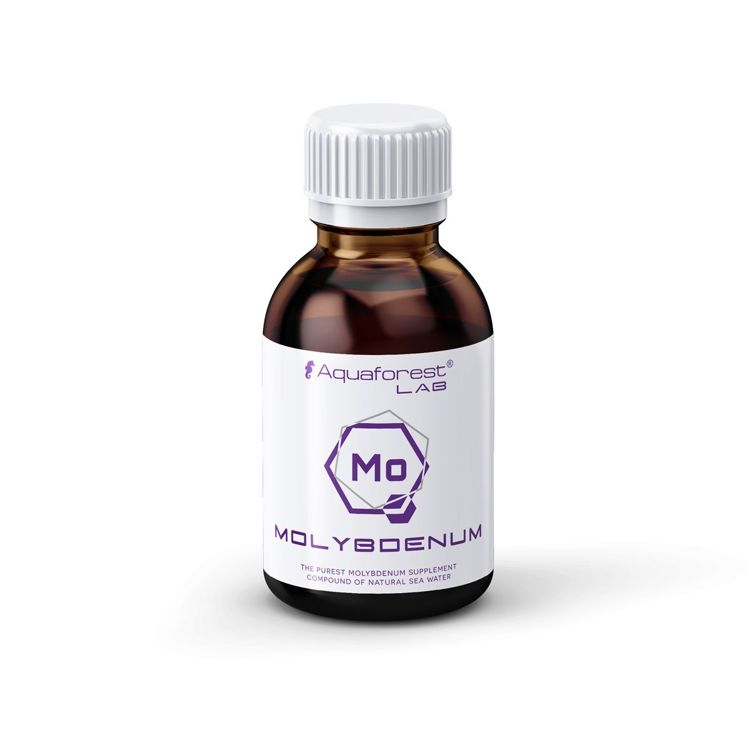 Molybdenum Lab 200 ml