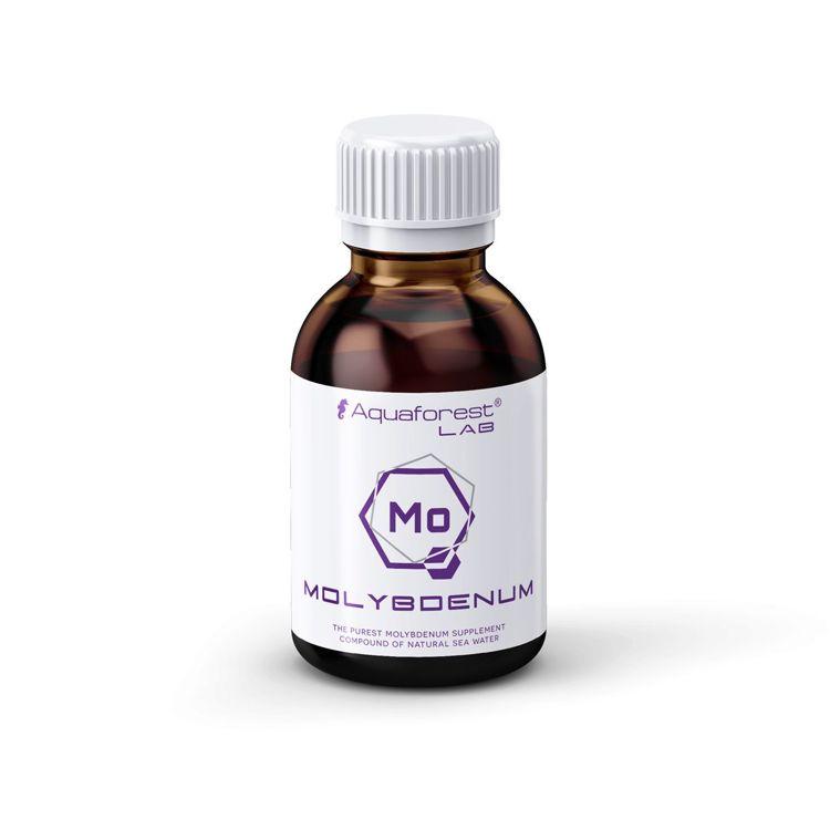 Molybdenum Lab 200 ml